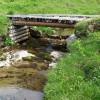 (動画有)メダカとミナミヌマエビの飼育記録〜水槽清掃、水草トリミング