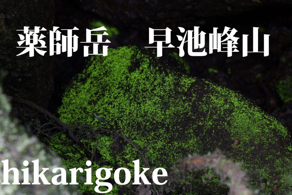 薬師岳 ヒカリゴケ