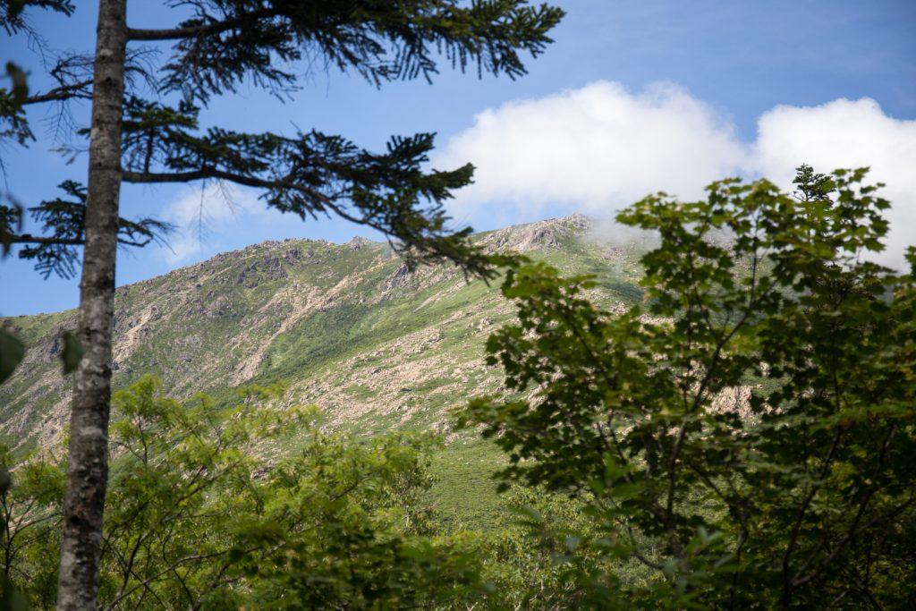 薬師岳 登山 早池峰山